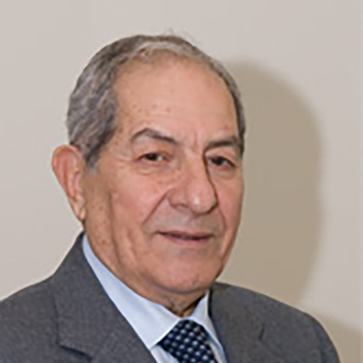 Prof. Gaetano Crepaldi (IT)